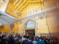 زائران اربعین در حرم امام علی(ع) +عکس