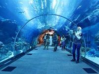 دبی؛ دومین مقصد یارانه ارزی سفر