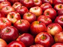 فواید خوردن روزانه سیب