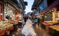خیابانهای رشت پس از توقف بارش برف