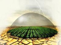 یک سوم اراضی زراعی کشور زیر پوشش بیمه است