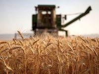 بیشترین صادرات محصولات کشاورزی هندوستان از ۲۰۱۹-۱۹۷۰