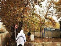 تهران فردا بارانی است