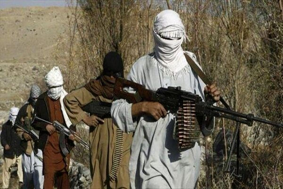 کسی به حرف های طالبان اعتماد نمی کند