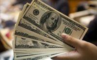 وضعیت بازار ارز طبیعی نیست/ انتفاع واردکنندگان و زیان صادرکنندگان از ارز 4200تومانی