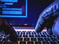 جولان دزدان در فضای مجازی رو به افزایش است