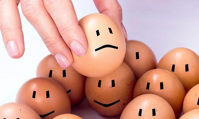 وقتی تخم مرغ غیر قابل تحمل می شود!