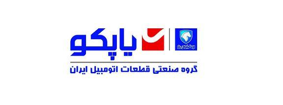 مدیرعامل شرکت گروه صنعتی قطعات اتومبیل ایران تغییر کرد