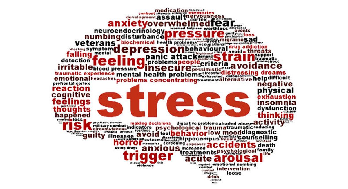 منابع غذایی مهم برای پیشگیری از اضطراب