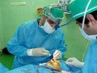 ماهانه ۲۰هزار عمل جراحی زیباییبینی در تهران انجام میشود