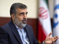 کمالوندی: مهلت دوماهه ایران در برجام قابل تمدید نیست