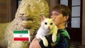 پیشگویی گربه پیشگو برای بازی ایران - اسپانیا +فیلم