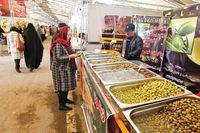 قیمتهای تلخ بازار زیتون