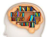 بهترین غذاها برای تقویت مغز و حافظه