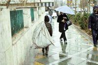 تولد کودکان کار از دل بیکاری