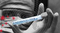 بررسی نوسانات بازار جهانی از زمان شیوع ویروس کرونا/ افزایش مداوم نوسان بازار شرکتهای برتر